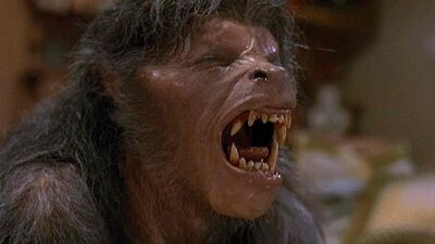 'American Werewolf in London' Being Remade By Director's Son