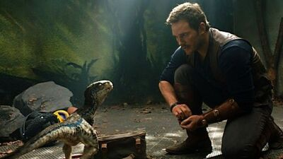 5 Reasons You Know the Love Is Real Between Owen and Blue in 'Jurassic World'