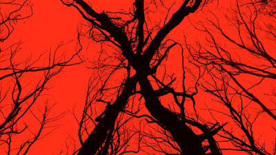 'Blair Witch' Simon Barrett and Adam Wingard Interview