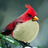 KookyKaptainKrunch's avatar
