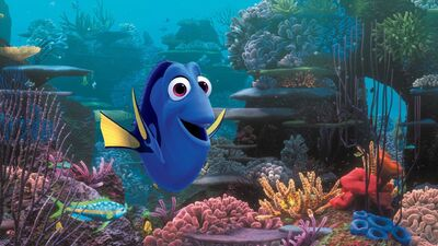 Crash Course: Everything You Need to Know About 'Finding Dory'