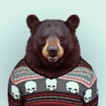 Bearwatch