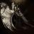 墮天使's avatar