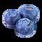 FoodCropBlueberries