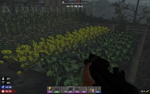 Farming-fullgrown