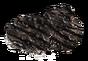 BearCharred