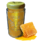 FoodHoney