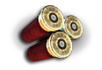 ShotgunShell