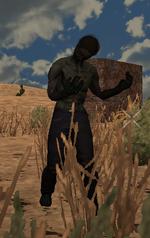 ZombieSteve