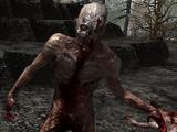 Одичавший зомби
