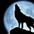 Lobo Solitário 2104