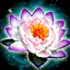 Lotus's Protection