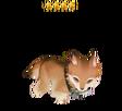 Pets Evan4sml