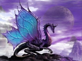 Dragons mystical