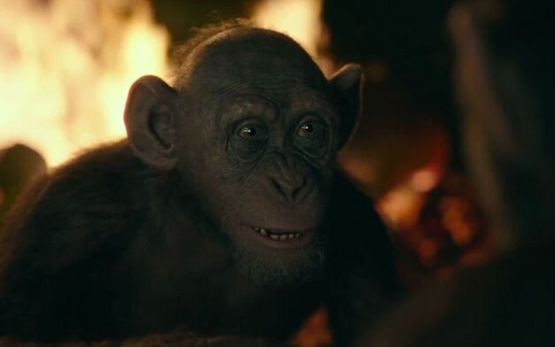 war for the planet of the apes bad ape steve zahn