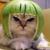 Catowar Meerkat