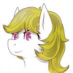 Surprise the fun loving pony's avatar