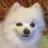 Jorge Joestar's avatar