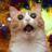 Derex202's avatar