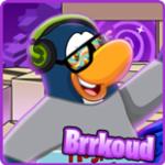 Brrkoud