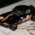 Pdas1996