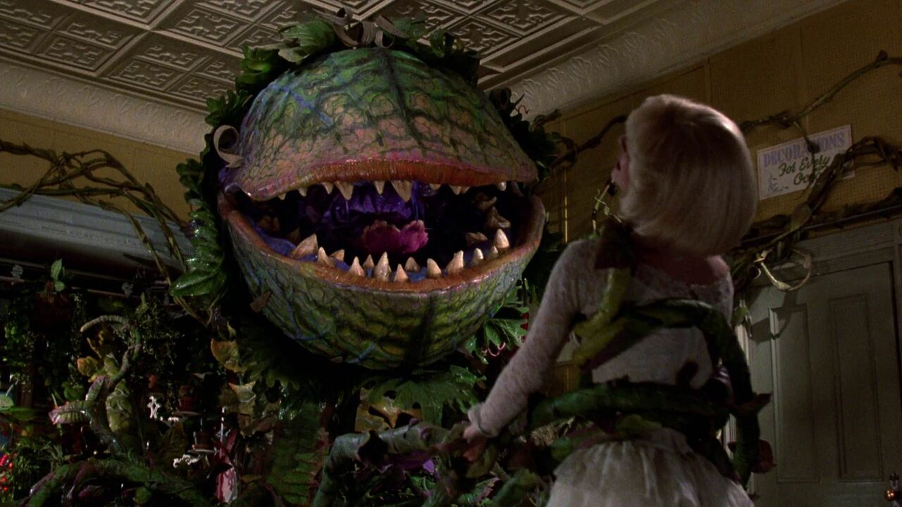 little shop of horror Little shop of horrors is a 1986 film adaptation of the musical of the same name, which was in turn loosely adapted from the original 1960 film, itself loosely based on the book green thoughts.