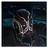 Fungus3's avatar