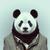Pandasobrenatural