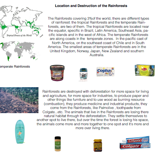 Products of rainforest