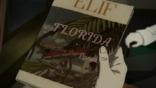 FloridaDay12