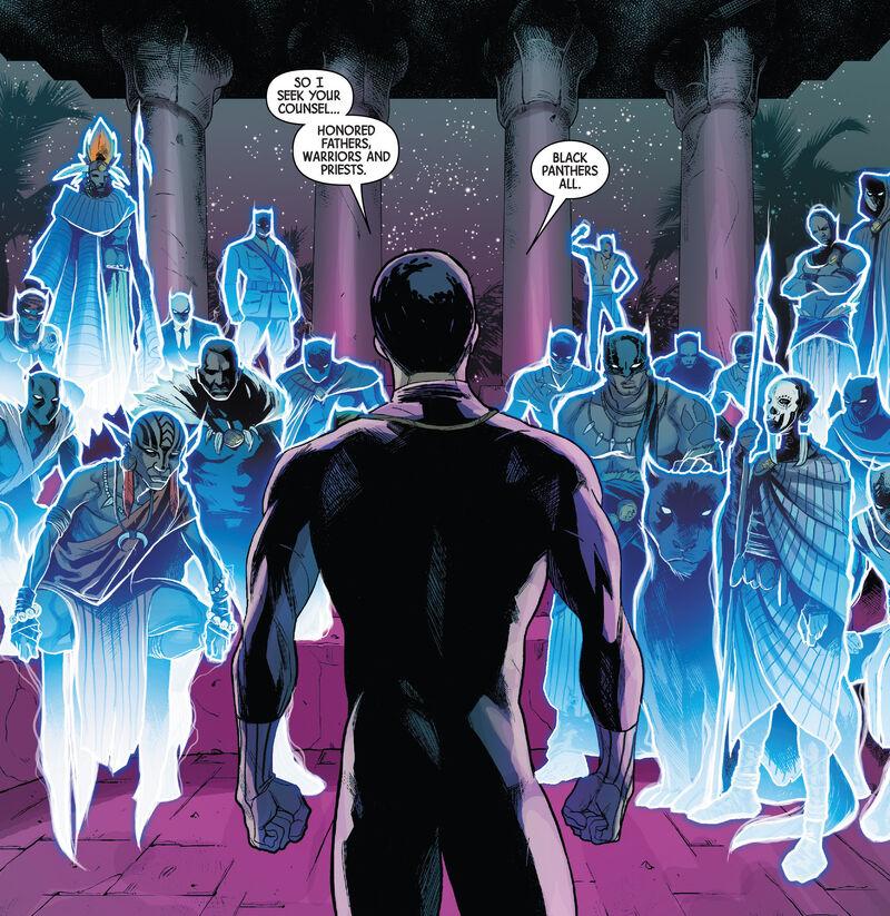 Black Panther Wakanda Necropolis