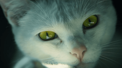 'Ghost Recon: Wildlands' - Cute Cat Trailer
