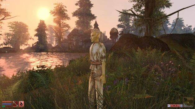 Morrowind-2012-02-26-19-54-52-48