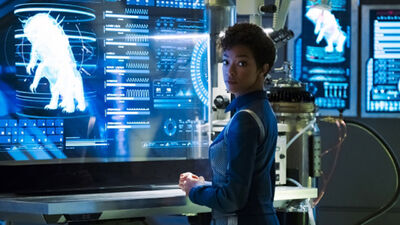 'Star Trek: Discovery': Will Michael Burnham Have a Cross-Species Romance?