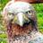 Milomilk's avatar