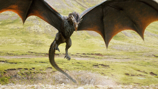 Riding a dragon would be cool in a Game of Thrones theme park, but just imagine the bars.
