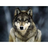Arrowwolf1928's avatar