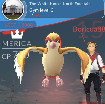 Pokemon Go White House Gym Battle