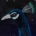 ScottyBlue's avatar