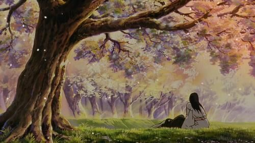meaning cherry blossoms in anime Samurai X: Reflection