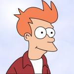 Fry 3000
