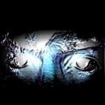 -scratch-'s avatar