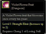 Violet Flower Fruit