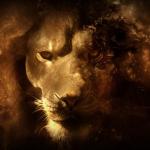 Lion chakra