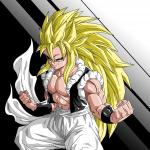 Goku484