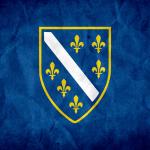 BosnianGamerMirza