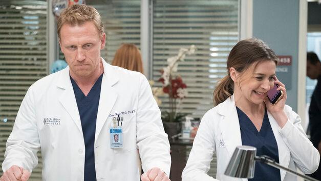 Grey's Anatomy Teddy