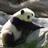 JacktheCREEPER79's avatar