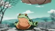 Hamonfrog