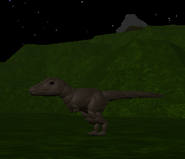 Baby Carnotaurus